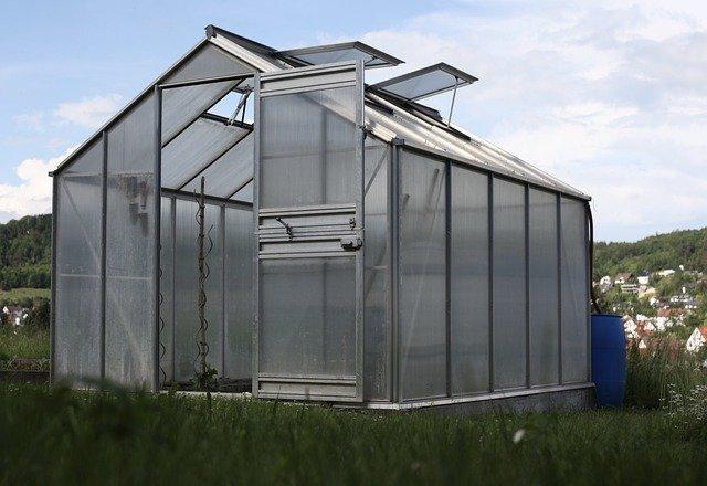 skleník na zahradě